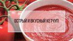 Кетчуп в термомиксе – Кетчуп острый — рецепты для Термомикс (Thermomix)