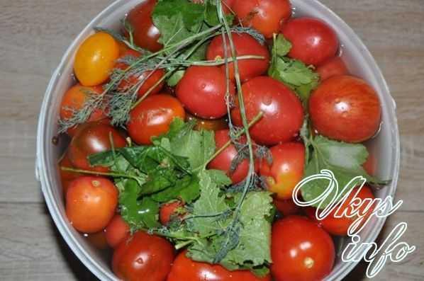 Что творится с помидорами попка зеленая внутри белый стержень